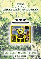 AGENDA SEMILLA 8